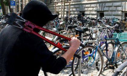 Ritrova la bici rubata al fratello, ma finisce a pugni