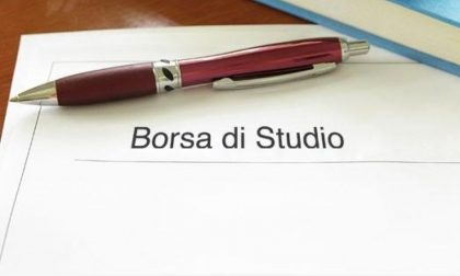 Borse di studio Elsa Pigoli Zucchi bando e scadenza