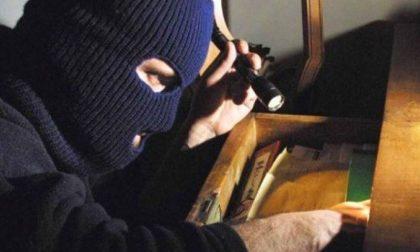 Legato e rapinato a casa: condannati gli autori