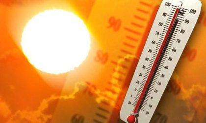 In arrivo un'ondata di calore: disagio anche forte nel Cremonese PREVISIONI METEO