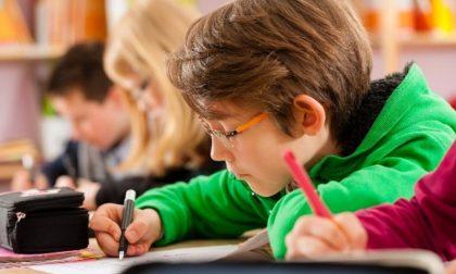 Educazione alla cittadinanza nelle scuole, il Comune di Cremona sostiene l'iniziativa