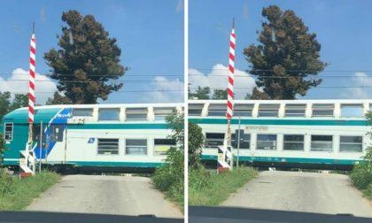 Il treno sfreccia, la sbarra del passaggio a livello non si abbassa