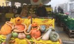 Festival della Zucca e Oasi dell'Uva al Mercato di Campagna Amica