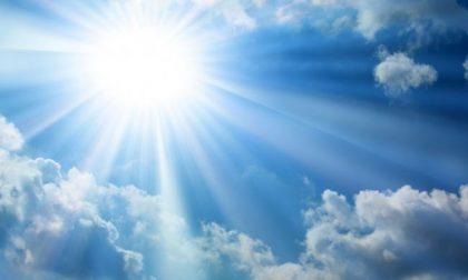 Afa e ozono in aumento in Lombardia: nel Cremonese superati i livelli di attenzione