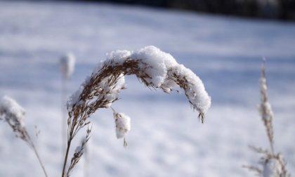Arriva la neve a Cremona e provincia? IL METEO