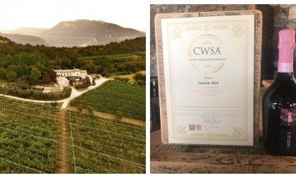 """Lo spumante del Consorzio Agrario di Cremona vince il """"China Wine & Spirits Awards"""""""