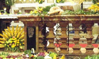 Giornata del Ringraziamento: domenica 17 novembre a Crema