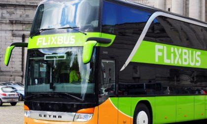 FlixBus torna a investire su Cremona: al via collegamenti diretti con 13 nuove città