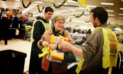 Colletta alimentare, il cuore grande dei cremonesi: donati oltre 66mila chili di cibo