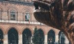 La magia della neve a Cremona raccontata attraverso Instagram FOTO