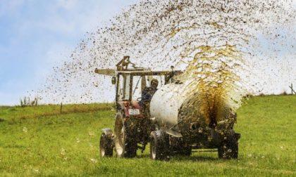 Spandimento reflui agricoli: da oggi quattro giorni di deroga, ma non a Cremona