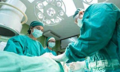 Prelievo multiorgano al Maggiore: l'ospedale riparte dopo l'emergenza sanitaria