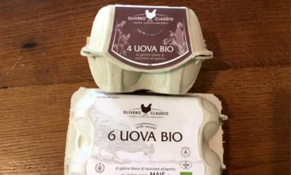 Uova prodotte a Cuneo ritirate dal mercato per contaminazione microbiologica