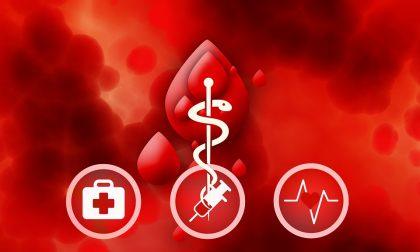 Sensibilizzare al dono del sangue: accordo tra Comune e AVIS Cremona