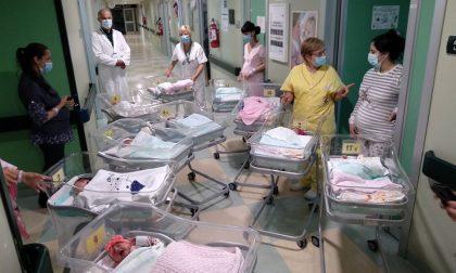 Boom di nascite all'Ospedale di Cremona: 15 bambini in sole 24 ore FOTO