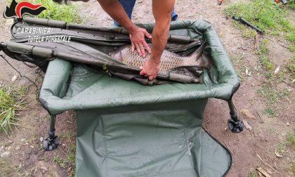 Pesca abusiva in laghi e fiumi: sequestrate canne e strumentazioni FOTO