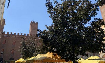 Campagna Amica torna domani in piazza Stradivari a Cremona