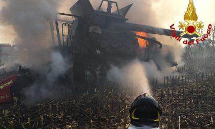 Mietitrebbia a fuoco nei campi, i Vigili del fuoco scongiurano il peggio FOTO – VIDEO