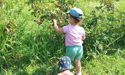Suona la campanella… primo giorno di scuola all'agrinido Piccoli Frutti