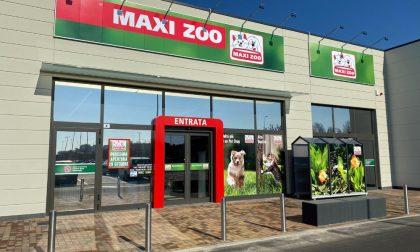 Maxi Zoo arriva a Cremona: cura e benessere per i nostri amici animali