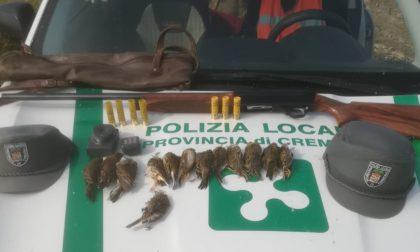 Abbatte diversi esemplari di specie protetta: cacciatore nei guai a Castelvisconti
