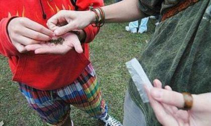 18enne sorpreso a vendere marijuana: scatta la denuncia
