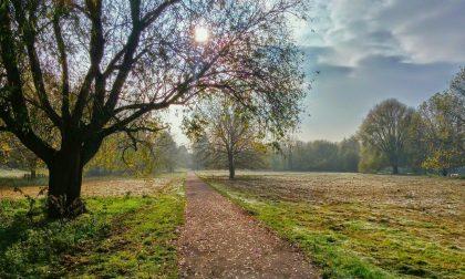 Sole, velature di passaggio e prime gelate notturne | Meteo Lombardia