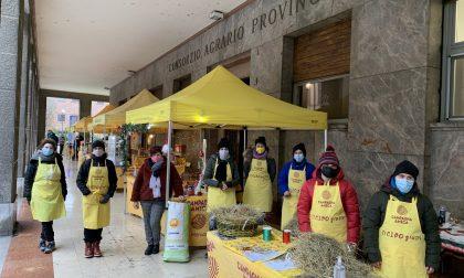 """Domani al Mercato di Campagna Amicadi Cremona la """"spesa sospesa"""" per aiutare chi ne ha più bisogno"""