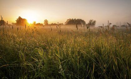 Tempo stabile e soleggiato con temperature in graduale risalita | Meteo Lombardia