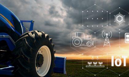 Consorzio agrario Cremona: innovazione digital a sostegno di filiera mais e ambiente