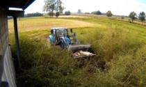 Allevamento di suini lager in provincia di Cremona: le foto shock