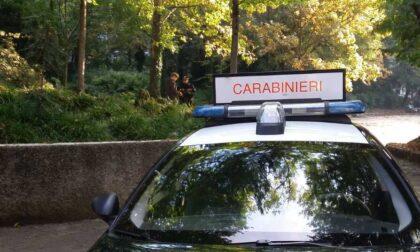 Lite al parco degenera: un carabiniere morso alla mano