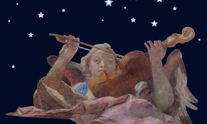 Apertura serale del Museo del Violino in occasione della Notte Europea dei Musei