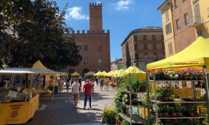 Dopo otto mesi d'assenza Campagna Amica torna in piazza Stradivari a Cremona