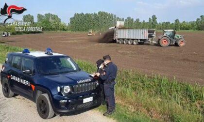 Fanghi tossici, vietato l'accesso ai campi velenosi e la raccolta del grano