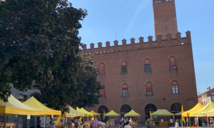 Estate al mercato di Campagna Amica: tornano le domeniche in piazza Stradivari a Cremona