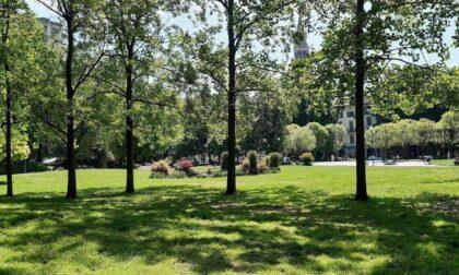 Aree verdi pubbliche, avviate la manutenzione e la messa in sicurezza