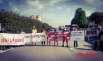 La protesta delle Iene Vegane torna al Mattatoio Zema di Salvirola