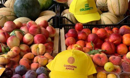 Campagna Amica, la spesa dell'estate al mercato di Crema