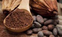 """Esselunga presenta il progetto """"Cacao sostenibile"""""""