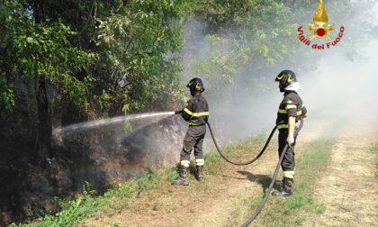Incendio nei pressi della piattaforma ecologica di San Rocco: sul posto quattro mezzi dei Vigili del Fuoco