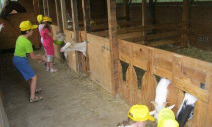 Domenica 26 settembre fattorie didattiche a porte aperte: ecco dove