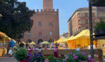 Campagna Amica domani in piazza Stradivari a Cremona