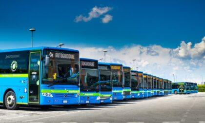 Green pass obbligatorio: possibili disagi sulle corse degli autobus, anche a Crema